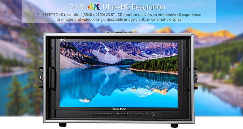 Feelworld Seetec 4K238-9HSD-CO