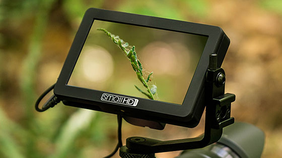 smallhd focus 5 micro hdmi monitor. Black Bedroom Furniture Sets. Home Design Ideas
